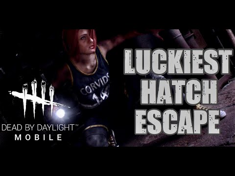 Dead By Daylight Mobile Miracle Hatch