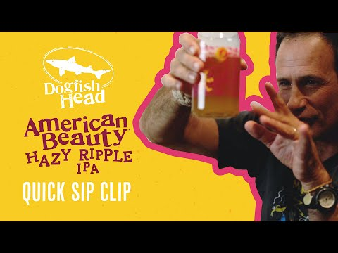 Dogfish Head Quick Sip Clip: American Beauty Hazy Ripple IPA