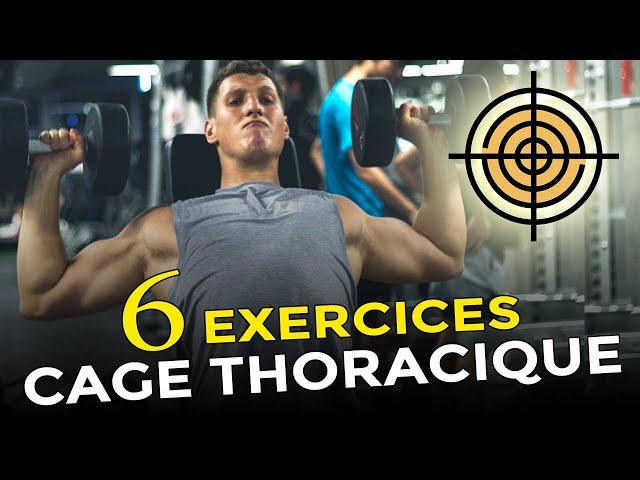 6 EXERCICES HALTÈRES POUR ÉLARGIR SA CAGE THORACIQUE EN MUSCULATION