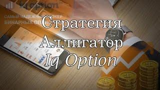 Стратегия аллигатор iq option. Iq option обучение