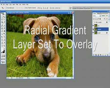 Add Focus To Your Photo And Grab Attention in Photoshop