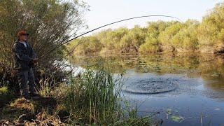 Жирный ЛИНЬ С БЕРЕГА Щука на поплавок Рыбалка на удочку на утренней зорьке Лютая Холодрыга