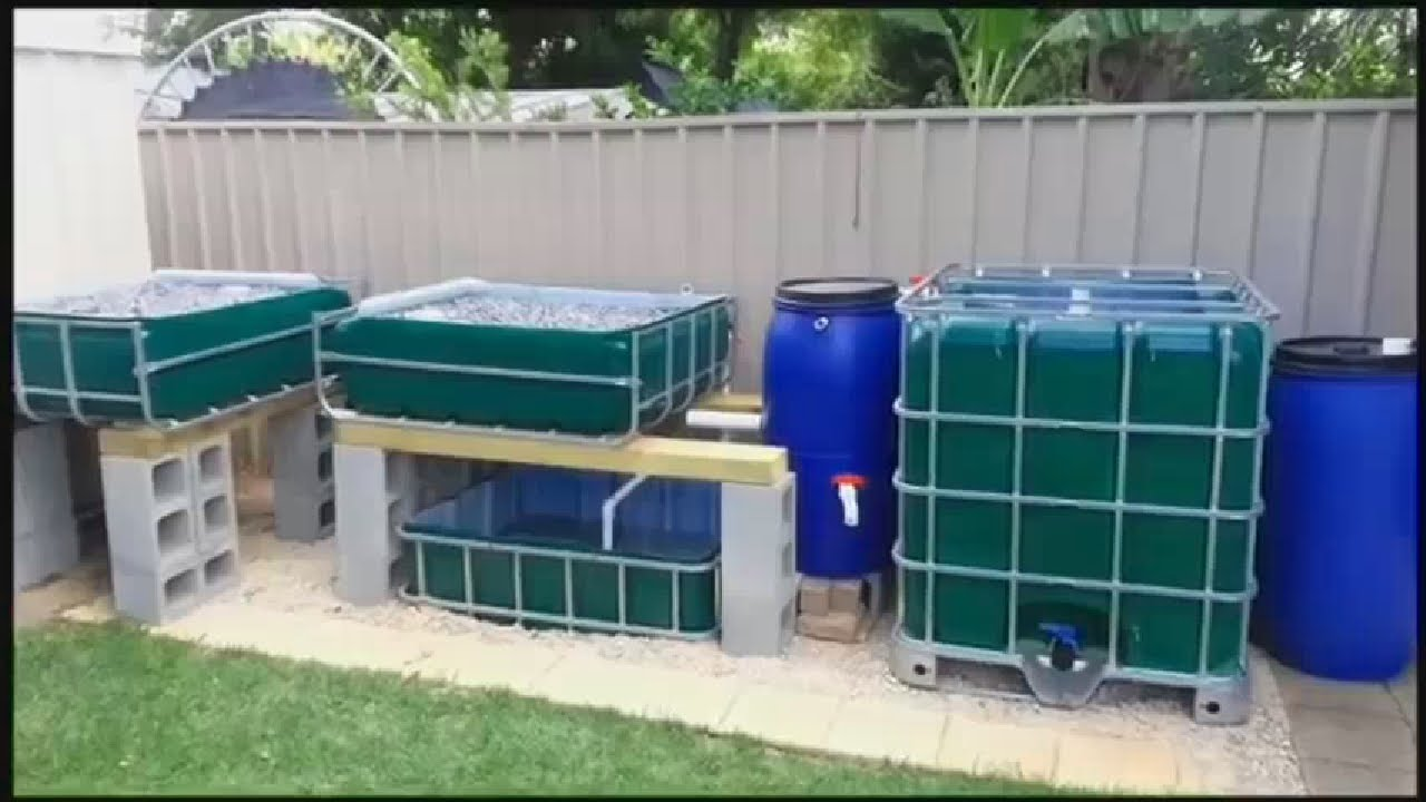 Aquaponics Made Easy Aquaponics For You Review Youtube