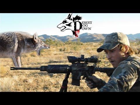 Hunting On AZ Ranch For Predators ( Watch In HD 1080 )
