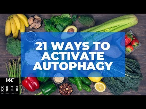 what-is-autophagy-and-how-does-it-work?- -21-ways-to-achieve-autophagy