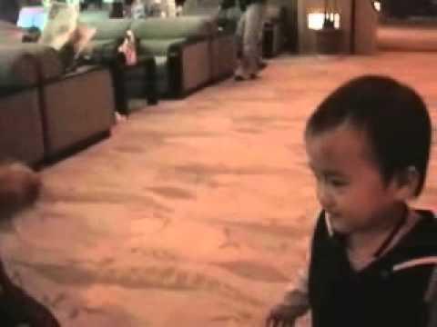 1 1 0004 2000 9 24 、健太郎1歳8ヶ月(温泉旅行!)