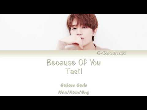 Taeil (태일) - Because Of You (단 한 사람) (Color Coded Han|Rom|Eng Lyrics)