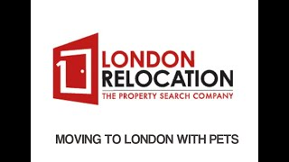 Moving To London With Pets? Do you need to move to London?