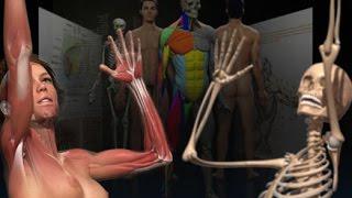 Фигура человека в движении(http://3dmaster.grandikos.com/ Одной из важнейших задач, стоящих перед художником, является правдивое и реалистичное..., 2014-12-20T09:10:58.000Z)