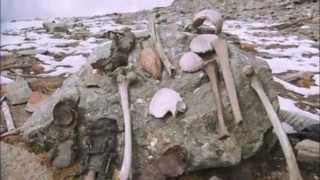 The Himalayan Skeleton Lakes 1200 Year Mystery Solved - OIM Original