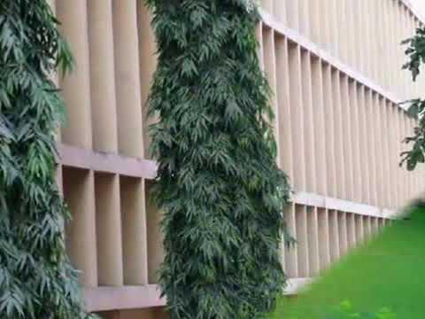 NIT Jamshedpur - National Institute of Technology, Jamshedpur