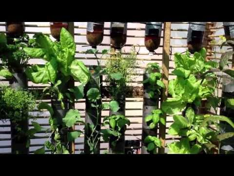 Wall Mounted Vertical Bottle Garden With Self Watering