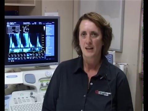 Cardiac Physiologists – Monash Heart