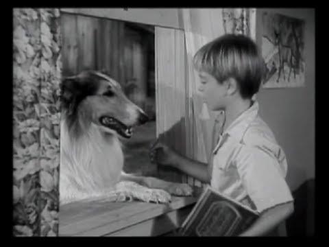 Lassie  Episode 2