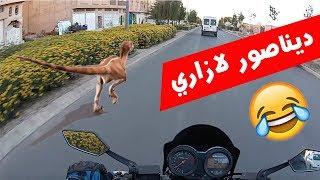 Oujda Moto الحلقة 3# : تسركيل وديناصور فلازاري