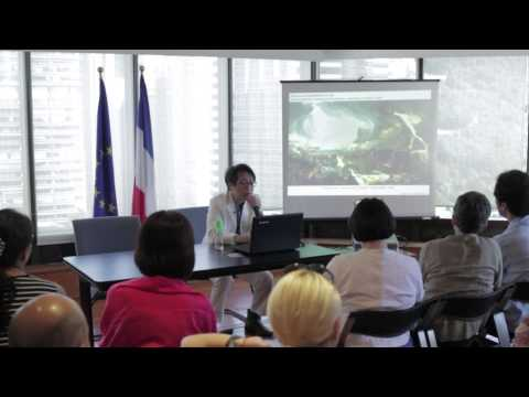 Public Lecture Series -- The French Connections - Lecture 3 by Hoyin LEE
