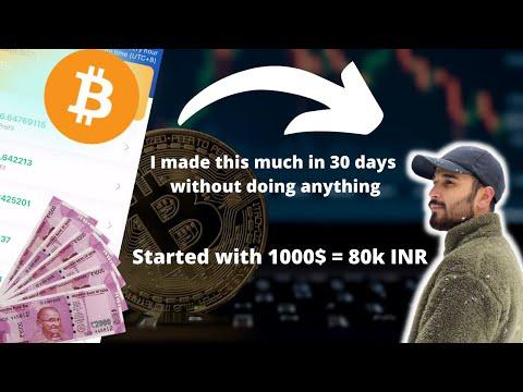 I invested 1000$ on Crypto Bot Trading for 30 Days | RoyalQ