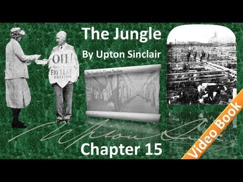 Chapter 15 - The Jungle by Upton Sinclair