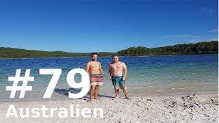 Größte Sandinsel DER WELT - FRASER ISLAND! || VLOG #79 || AUSTRALIEN