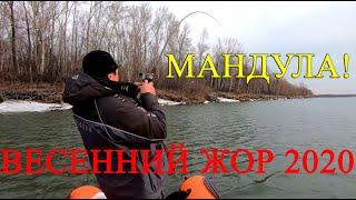 Рыбалка на спиннинг 2020 Успеть до половодья