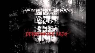 SCHIZOPHRENIE NOCTURNE - Tears Of A Forgotten Life