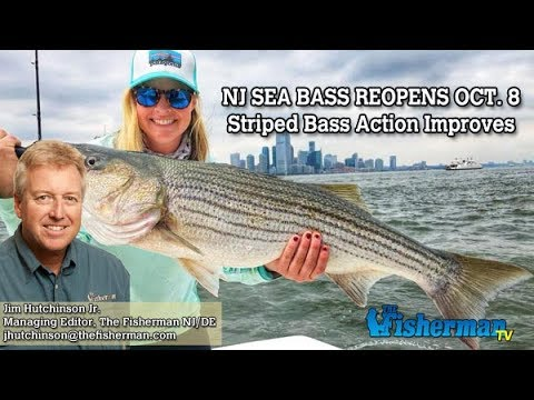 October 4, 2018 New Jersey/Delaware Bay Fishing Report with Jim Hutchinson, Jr.