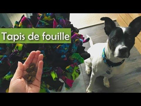 Tapis de fouille stimulation pour votre animal - Tapis de fouille ...