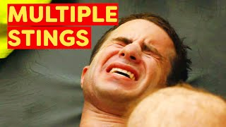 Bondi Rescue Season 6 Episode 5