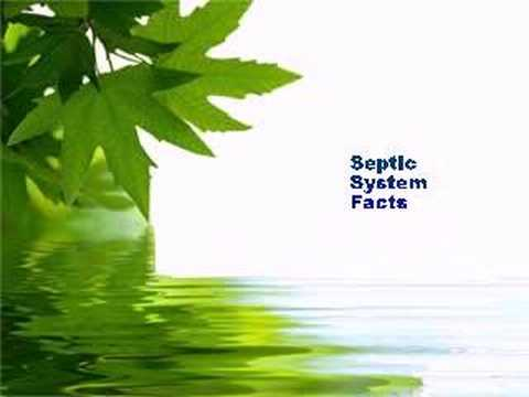Septic Tank Problems in Maximo