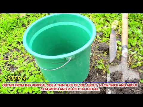Collection and Preparation of Soil Sample