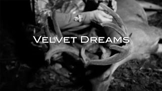 Velvet Dreams (Bowhunting for a Big Velvet Buck)