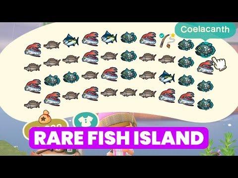 BIG (Rare) Fish Mystery Island - Animal Crossing: New Horizons