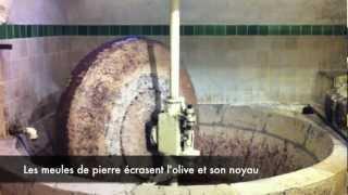 Fabrication de l'huile d'olive à l'ancienne - olive oil mill @Nicolas Alziari