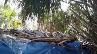 Primitive Technology - The Bug Out Yurt Survives A Storm (V566)