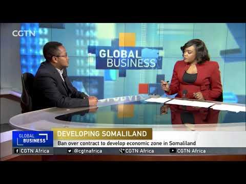 Somalia bans Dubai ports World from operating in Somaliland