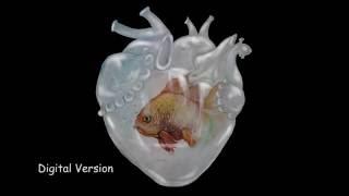 AQUARIUM HEART