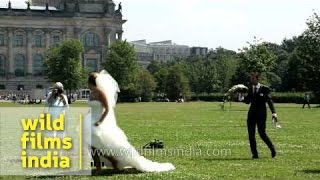 New bride in Berlin poses before the Reichstag, Germany