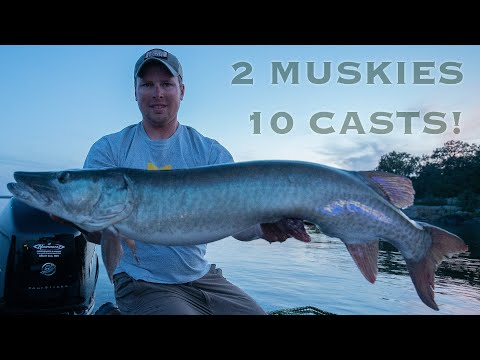2 MUSKIES IN 10 CASTS (Guiding On LOTW)