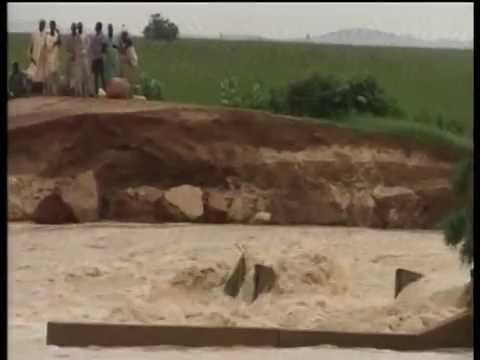 Collapsed Lugu Dam May Affect Paddy Rice Farmers In Sokoto
