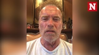 Arnold Schwarzenegger Calls Trump A 'Wet Noodle' After Putin Summit