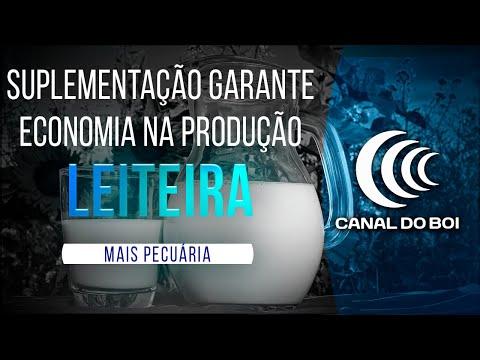 SUPLEMENTAÇÃO COM SILAGEM GARANTE ECONOMIA NA PRODUÇÃO LEITEIRA.