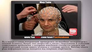 учёный  оживил голову мёртвого человека