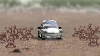 Почему крабы не передвигаются на авто