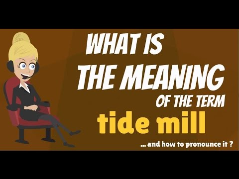 What is TIDE MILL? What does TIDE MILL mean? TIDE MILL meaning, definition & explanation