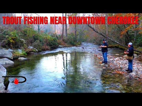 Trout Fishing Near Downtown Cherokee