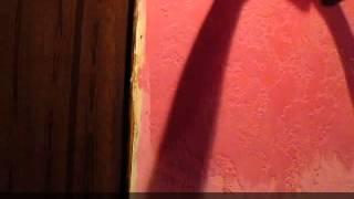 видео Как выполняется покраска стен водоэмульсионной краской?