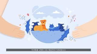 녹십자 수의약품, 반려동물 진통제 라인업 출시!!