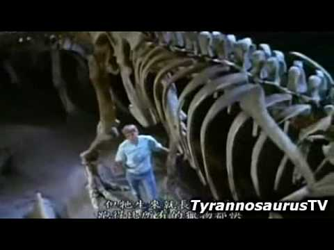 The Ultimate Guide (3/5) TYRANNOSAURUS REX