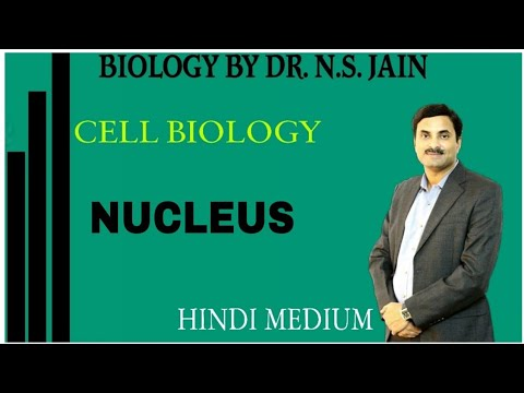 Nucleus (केन्द्रक) Cell Biology|Class 11th+NEET|Hindi Medium