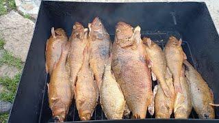 Окуня горячего копчения Как закоптить окуня Рыбалка